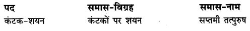 UP Board Solutions for Class 10 Hindi Chapter 2 ममता (गद्य खंड) img-1