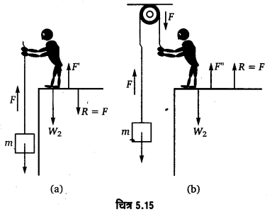 UP Board Solutions for Class 11 Physics Chapter 5 Laws of motion 39