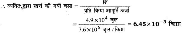 UP Board Solutions for Class 11 Physics Chapter 6 Work Energy and power 26