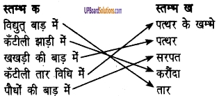 UP Board Solutions for Class 6 Agricultural Science Chapter 5 फसलों की सुरक्षा 1