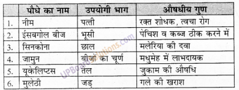UP Board Solutions for Class 6 Environment Chapter 7वन एवं वन्य जीव img-1