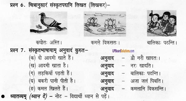 UP Board Solutions for Class 6 Sanskrit Chapter 1 पुनरावलोकनम्-1 6