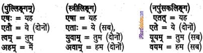 UP Board Solutions for Class 6 Sanskrit Chapter 2 पुनरावलोकनम्-2 1