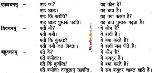 UP Board Solutions for Class 6 Sanskrit Chapter 2 पुनरावलोकनम्-2 2