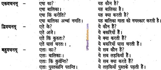UP Board Solutions for Class 6 Sanskrit Chapter 2 पुनरावलोकनम्-2 3