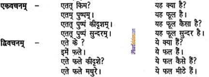 UP Board Solutions for Class 6 Sanskrit Chapter 2 पुनरावलोकनम्-2 4