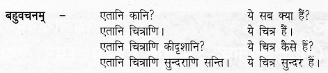 UP Board Solutions for Class 6 Sanskrit Chapter 2 पुनरावलोकनम्-2 5