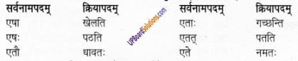 UP Board Solutions for Class 6 Sanskrit Chapter 2 पुनरावलोकनम्-2 6