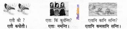 UP Board Solutions for Class 6 Sanskrit Chapter 2 पुनरावलोकनम्-2 7