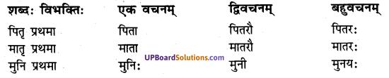 UP Board Solutions for Class 7 sanskrit chapter 1 पुनरावलोकनम् 2