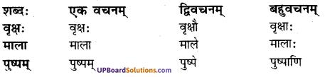UP Board Solutions for Class 7 sanskrit chapter 1 पुनरावलोकनम् 3