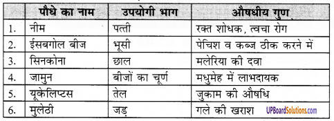 UP Board Solutions for Class 8 Environment Chapter 7 वन एवं वन्य जीव 1
