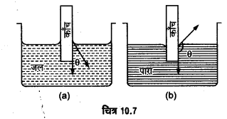 UP Board Solutions for Class 11 Physics Chapter 10 Mechanical Properties Of Fluids 37