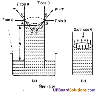 UP Board Solutions for Class 11 Physics Chapter 10 Mechanical Properties Of Fluids 74