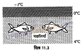 UP Board Solutions for Class 11 Physics Chapter 11 Thermal Properties of matter 33