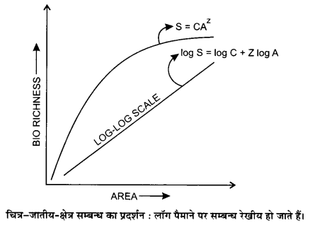 UP Board Solutions for Class 12 BiologyChapter 15 Biodiversity and Conservation img-1