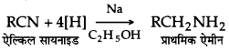 UP Board Solutions for Class 12 Chemistry Chapter 13 Amines image 60