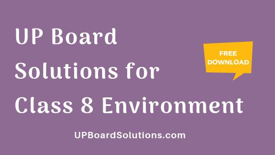 UP Board Solutions for Class 8 Environment पर्यावरण : हमारा पर्यावरण