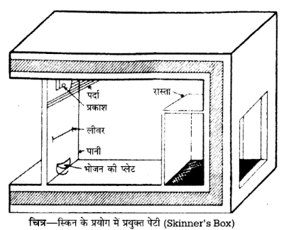 UP Board Solutions for Class 12 Psychology Chapter 3 Learning 4