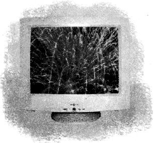UP Board Class 5 Computer Education कम्प्यूटर शिक्षा 11