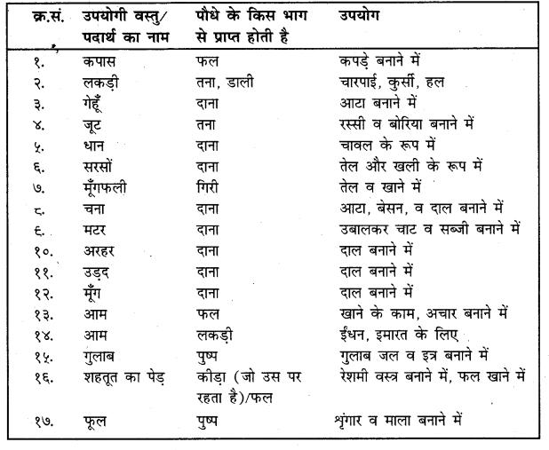 UP Board Solutions for Class 4 Science Parakh Chapter 2 पौधों और जंतुओं की उपयोगिता तथा उनकी देखभाल 1