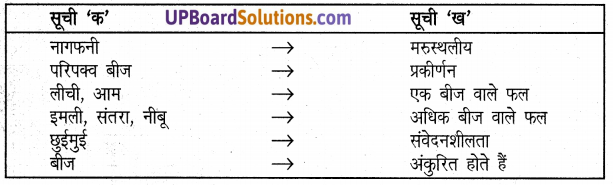 UP Board Solutions for Class 5 Science Parakh Chapter 3 बीज और नन्हा पौधा 2