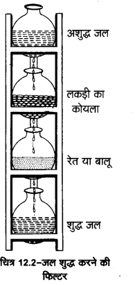 UP Board Solutions for Class 11 Home Science Chapter 12 जल तथा खाद्य पदार्थ आपूर्ति 5