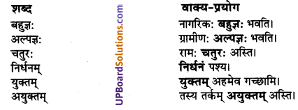 UP Board Solutions for Class 10 Hindi Chapter 4 प्रबुद्धो ग्रामीणः (संस्कृत-खण्ड) img-5