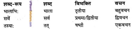 UP Board Solutions for Class 10 Hindi Chapter 5 देशभक्त: चन्द्रशेखरः (संस्कृत-खण्ड) img-5