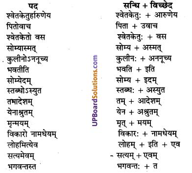 UP Board Solutions for Class 10 Hindi Chapter 7 छान्दोग्य उपनिषद् षष्ठोध्यायः (संस्कृत-खण्ड) img-2