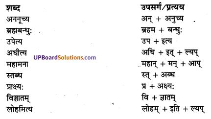 UP Board Solutions for Class 10 Hindi Chapter 7 छान्दोग्य उपनिषद् षष्ठोध्यायः (संस्कृत-खण्ड) img-3