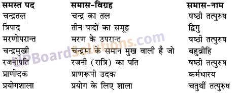 UP Board Solutions for Class 10 Hindi Chapter 7 पानी में चंदा और चाँद पर आदमी (गद्य खंड) img-1
