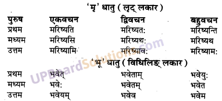 UP Board Solutions for Class 10 Hindi Chapter 9 जीवन-सूत्राणि (संस्कृत-खण्ड) img-4