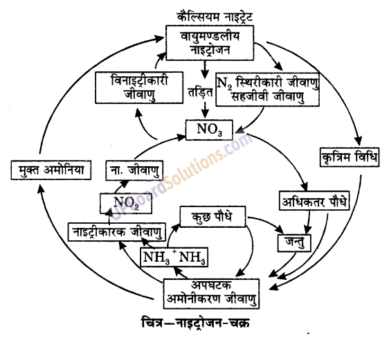 UP Board Solutions for Class 9 Science Chapter 14 Natural Resources 1
