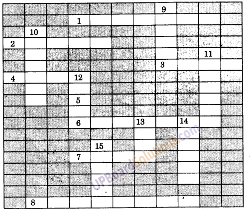 UP Board Solutions for Class 9 Social Science Geography Chapter 3 अपवाह