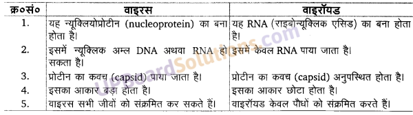 UP Board Solutions for Class 11 Biology Chapter 2 Biological Classificationimage 1