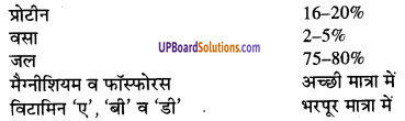 UP Board Solutions for Class 9 Home Science Chapter 13 खाद्य पदार्थों का संगठन, वर्गीकरण और उनके कार्य
