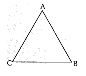 Balaji Class 9 Maths Solutions Chapter 12 Congruence of Triangles Ex 12.4 VS Q20