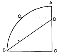 UP Board Solutions for Class 10 Maths Chapter 12 Areas Related to Circles page 257 12