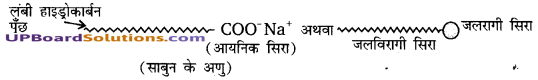 UP Board Solutions for Class 10 Science Chapter 4 Carbon and Its Compounds img-20