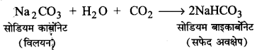 UP Board Solutions for Class 11 Chemistry Chapter 10 The s-block Elements img-40