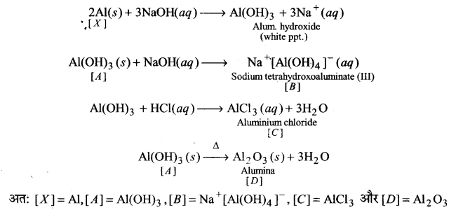 UP Board Solutions for Class 11 Chemistry Chapter 11 The p-block Elements img-34