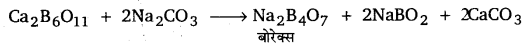 UP Board Solutions for Class 11 Chemistry Chapter 11 The p-block Elements img-53