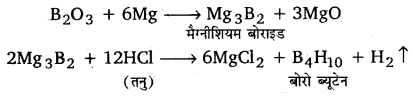 UP Board Solutions for Class 11 Chemistry Chapter 11 The p-block Elements img-59