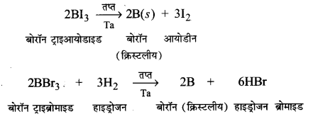 UP Board Solutions for Class 11 Chemistry Chapter 11 The p-block Elements img-77