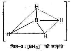 UP Board Solutions for Class 11 Chemistry Chapter 11 The p-block Elements img-8