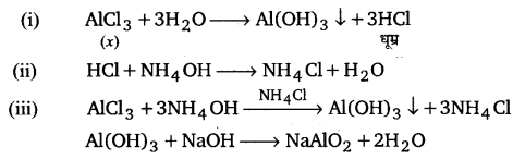 UP Board Solutions for Class 11 Chemistry Chapter 11 The p-block Elements img-87