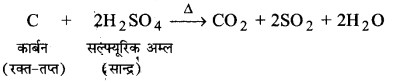 UP Board Solutions for Class 11 Chemistry Chapter 11 The p-block Elements img-95