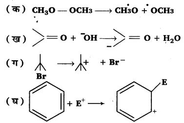 UP Board Solutions for Class 11 Chemistry Chapter 12 Organic Chemistry Some Basic Principles and Techniques img-20
