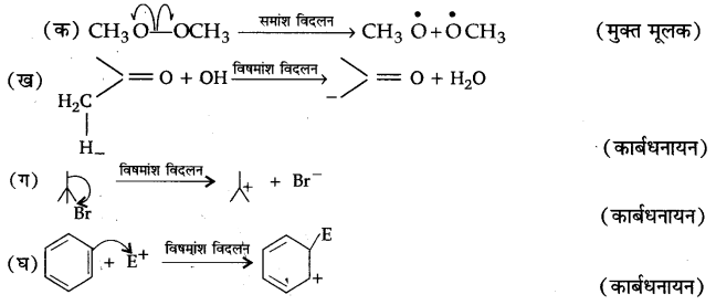 UP Board Solutions for Class 11 Chemistry Chapter 12 Organic Chemistry Some Basic Principles and Techniques img-21